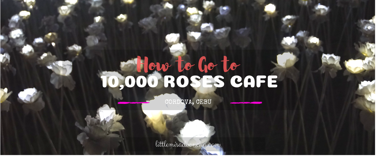 How to go to 10,000 Roses Cafe in Cordova, Cebu