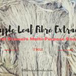 Pineapple Leaf Fibre (PALF) Extraction at T'boli Farm Growers Multi-Purpose Cooperative (TFGMPC)